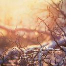 В Казани установлен температурный рекорд