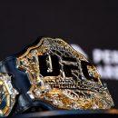 UFC стал жертвой хакеров