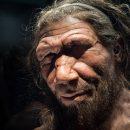 Пересмотрена история раннего человечества