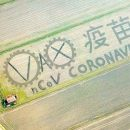 Художник «создал» коронавирус на поле с помощью трактора