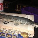 Похожую на крокодила редкую рыбу обнаружили мертвой в пруду