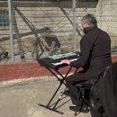Директор зоопарка сыграл животным на синтезаторе во время карантина