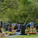 В Татарстане молодой человек разработал приложение для поиска могил на кладбище