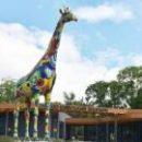 Паркинг возле зоопарка в Киеве откроют в сентябре