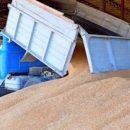 В Татарстане рабочие случайно засыпали мужчину зерном. Он погиб