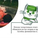 Почему татарстанцам не стоит обижаться на все подряд и причем здесь ЛГБТ, феминистки и Зулейха