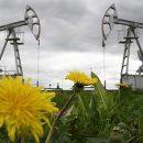 Эксперт признал хеджирование нефтяных цен благоприятным для экономики России