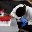ВОЗ спрогнозировала рост смертности из-за коронавируса в Европе