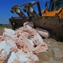 Россияне высказались против уничтожения санкционных продуктов