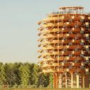 Индийские архитекторы решили построить башню из «листьев»
