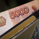 Подсчитаны зарплатные убытки россиян на пике карантина
