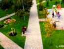 Киевлянам показали, как озеленили сквер имени Кузьмы Скрябина (видео)