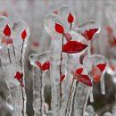 Россиянам пообещали оттепели в декабре