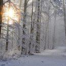 Россиянам предсказали погодные аномалии