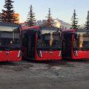 «Была растеряна»: кондуктор автобуса в Казани помогла бабушке, которая потеряла память