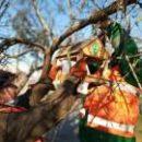 В парках столицы развесили более 800 кормушек для птиц (фото)