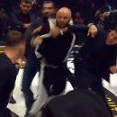 В полиции рассказали о возможном наказании для Исмаилова за драку на турнире MMA