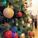 В Казани начали работу пункты приема новогодних елок для утилизации