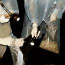 Ученые из Уханя рассказали об укусах летучих мышей