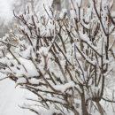Синоптики Татарстана предупреждают о серьезном ухудшении погоды на 8 марта