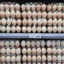 Россиян предупредили о возможном дефиците яиц