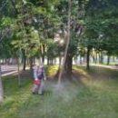 В Киеве обработали парки от клещей (перечень)