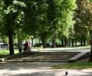 Павловский сквер забрали у застройщика
