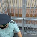 Юрист объяснил домашний арест для сбившей троих детей россиянки