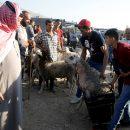 Израильский суд отказал израильским поселенцам в праве выселить палестинцев
