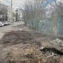 Киев обжалует решение суда о возвращении зеленой зоны возле метро «Сырец» для застройки