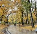 В Киеве появится еще один парк и скверы (перечень)