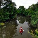 Facebook запретит распродавать леса Амазонки